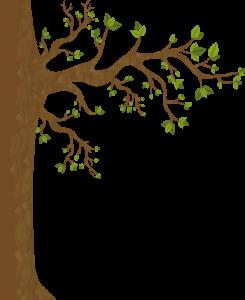 arbre_595_982-ajusté